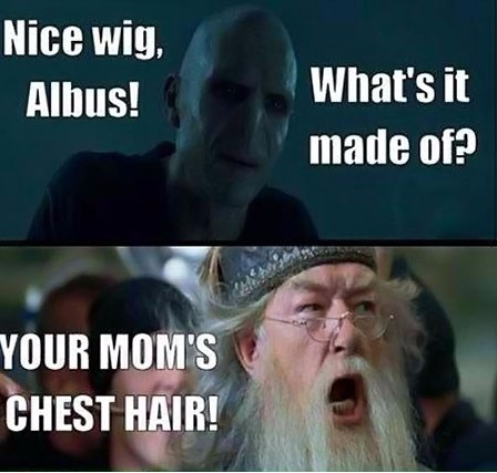 funny-Voldemort-angry-Dumbledore