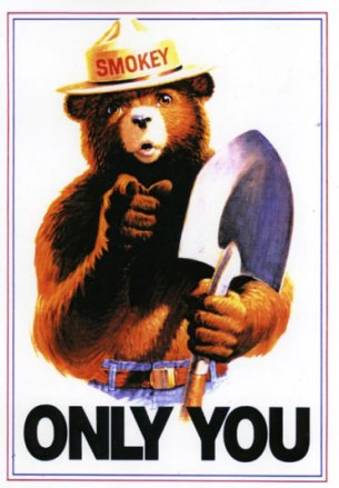 Smokey-the-bear-2