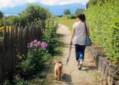 woman_person_dog_human_animal_nature_connected_walk-865123