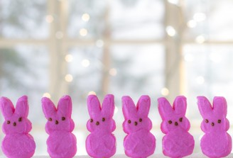 easter_bunny_peeps_pink_peeps_bunnies_candy_treat_sweet-1379839