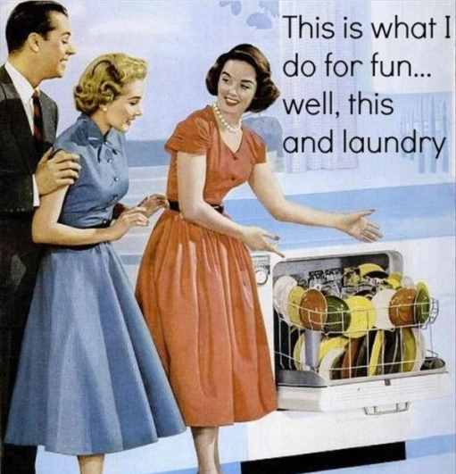 1950s-housewife-fun-do-for-fun-laundry-dishes-sarcasm